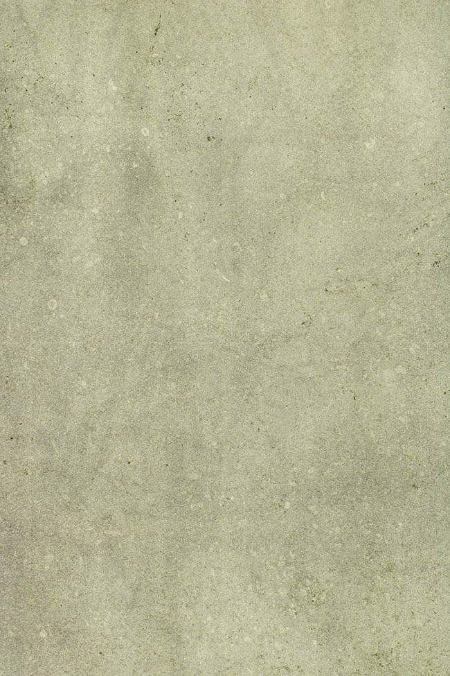 Photo backdrop 'olive' has a beautiful shade of green with subtle structures