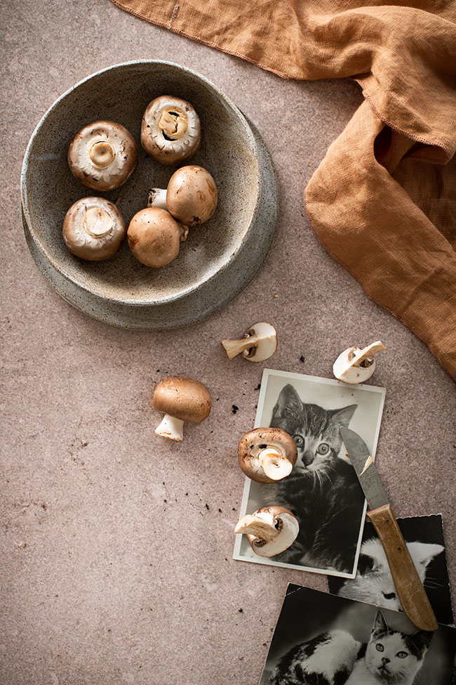 Vinyl backdrop 'autumn' is perfect for food and product photographers